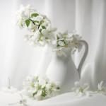 4_flowers
